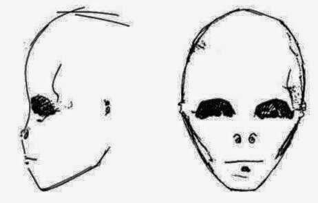Un investigador que ha visto las imágenes ha señalado al autor del reportaje que, el ser de las diapositivas tiene cierto parecido al supuesto humanoide observado por una enfermera en Roswell en 1947, y que fue dado a conocer por Glen Dennis a través de un dibujo.