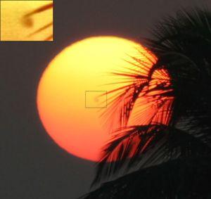 Mancha solar captada por una foto. Wikimedia Commons